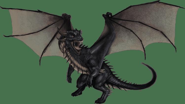 dragon_black__forrest_imel copy