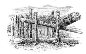 Beaver_trap_1892
