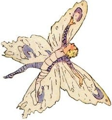 butterfly-fairies-5