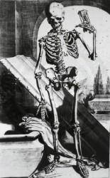 necropus laruascriptum greater