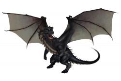 remember when haunt - dragon_black__forrest_imel