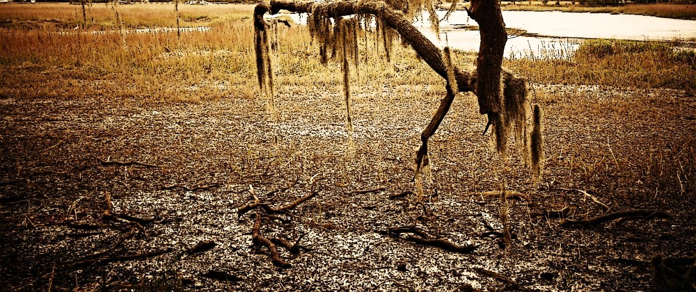 mud battle picture