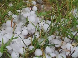 hail trap